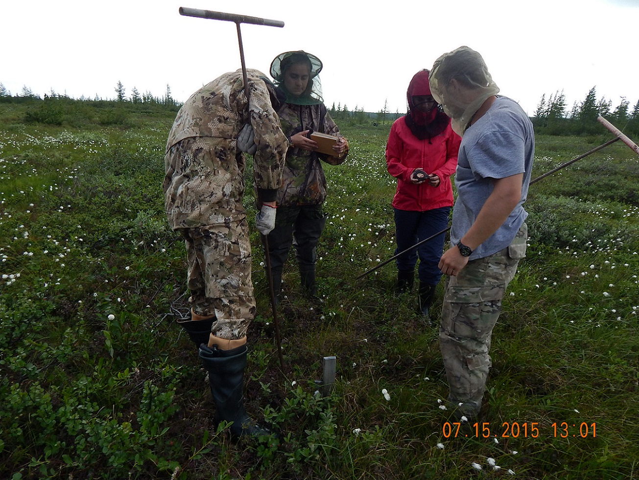 Russian Permafrost research